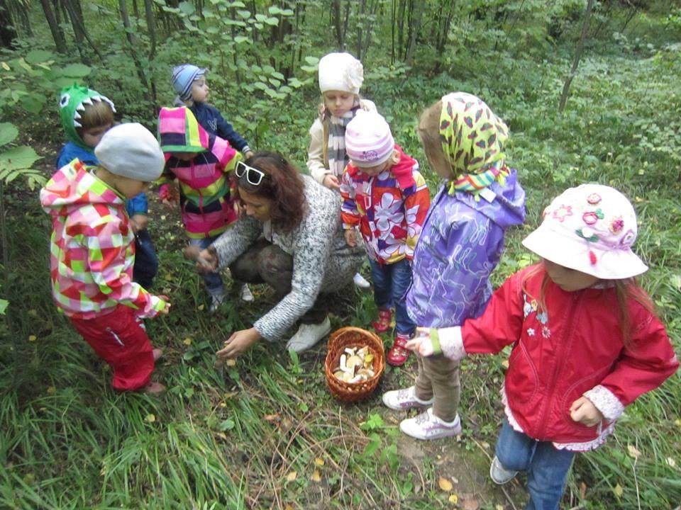 Все для детского сада площадки для прогулок